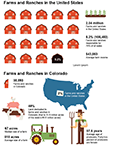 Agriculture Infographic Thumbnail