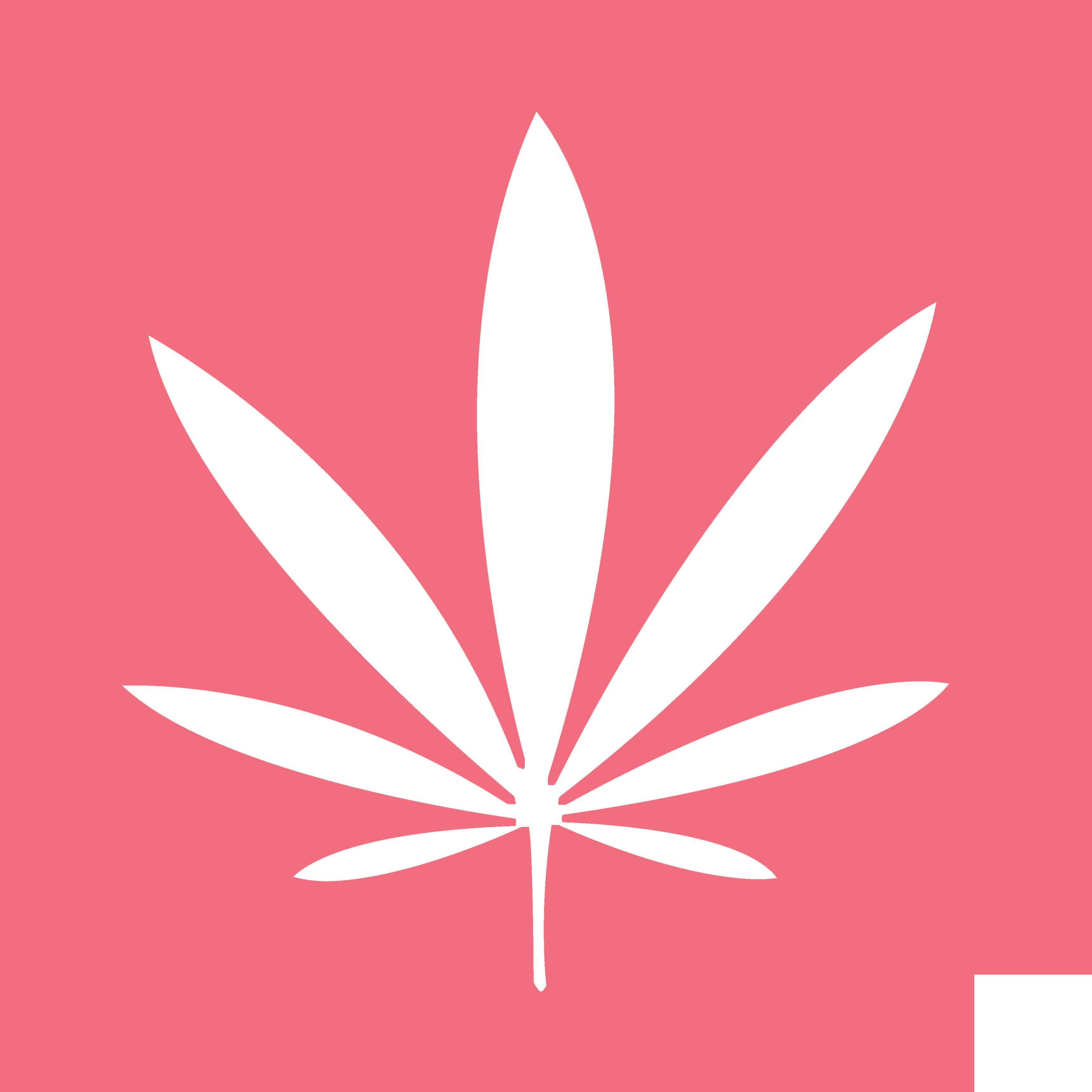 Marijuana-Icon-Pink-1